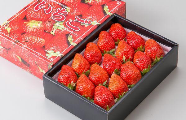 朝摘みいちご(化粧箱入り)1箱