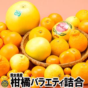 【送料無料】柑橘バラエティ