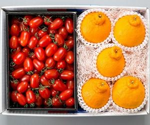【12月上旬から】フルーツトマト&デコポン