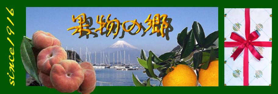 果物の郷 おくむら:魔法の果物ミラクルフルーツから果物の宝石静岡クラウンメロン等豊富な品揃え
