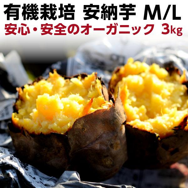 ポイント20倍 ギフト 安納芋 有機 安納芋 安納いも あんのう芋 蜜芋 五島列島 オーガニック MLサイズ A品 3kg