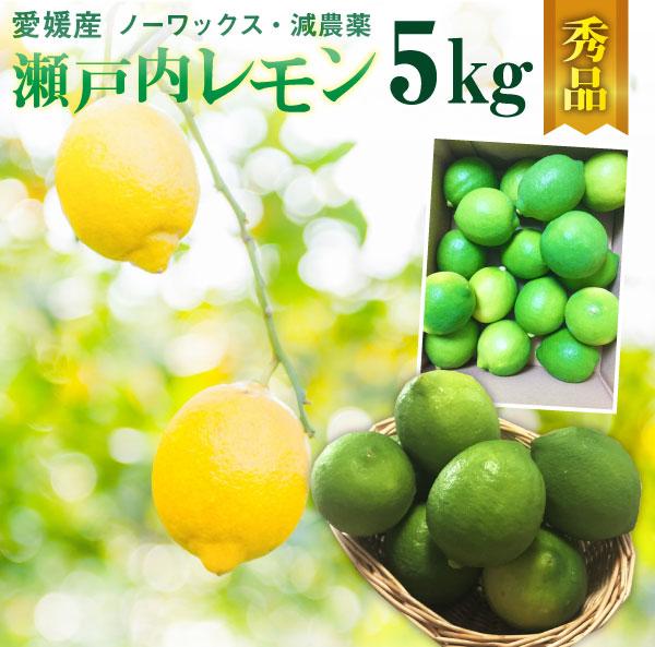 レモン 愛媛 瀬戸内レモン 5kg(42玉前後) 産地直送 ノーワックス・減農薬 秀品