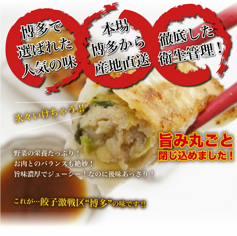 くいしんぼうグルメ便>お惣菜グルメ>博多一口餃子>博多一口餃子