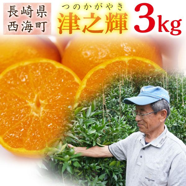 津之輝 つのかがやき 長崎 特選 春みかん 完熟 ミカン 秀品 3kg 送料無料 産直 甘い蜜柑 贈答用 サイズが選べる
