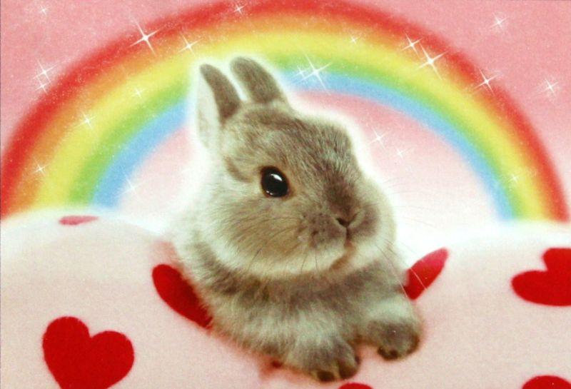 300ピースジグソーパズル 虹色うーちゃん 《廃番商品》