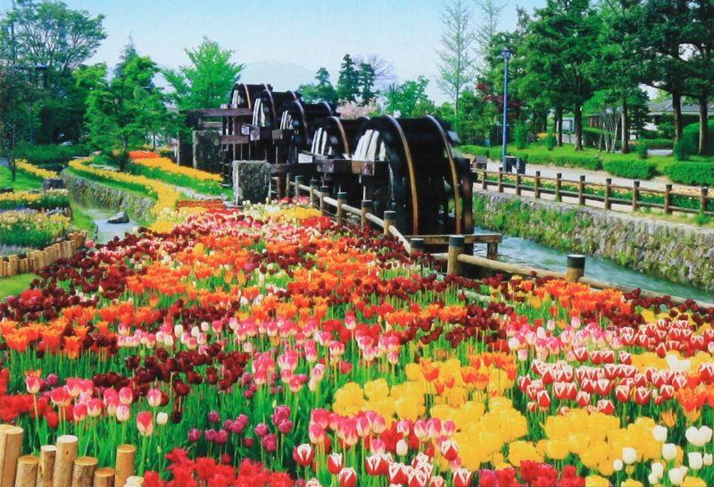 1053スーパースモールピースジグソーパズル 五連水車と花咲く公園-富山 《廃番商品》