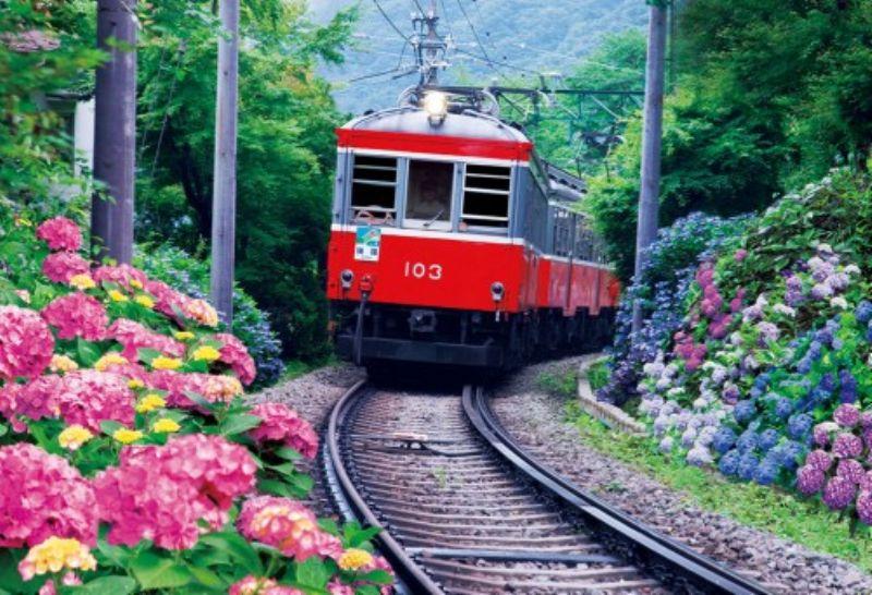 1000マイクロピースジグソーパズル あじさい咲く箱根登山鉄道 《廃番商品》