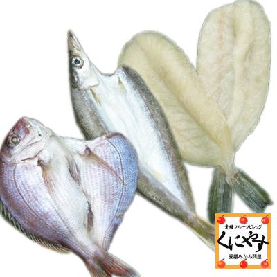 魚の宝庫 宇和海からの贈り物 販売 店舗 送料無料 鮮度抜群CAS冷凍品 天然魚 宇和海朝獲れ鮮魚の一夜干しお試し3枚セット カマス 真鯛 贈答 詰め合わせ フグ プレゼント お取り寄せ グルメギフト セット