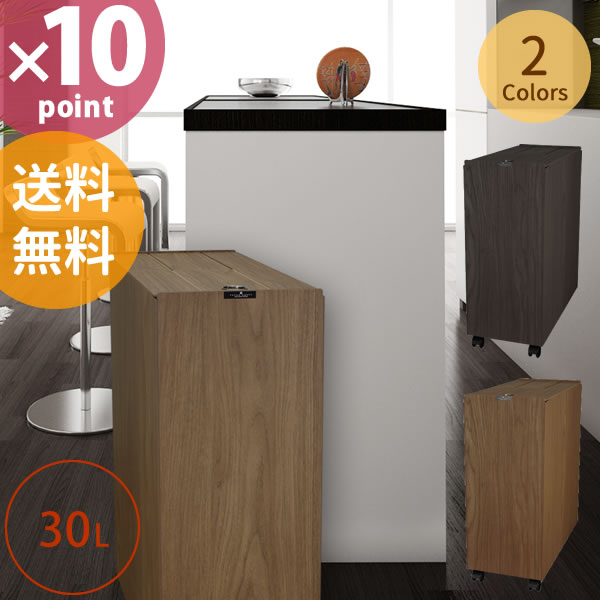 【送料無料】日本製 木目調 ダストボックス BOSK バスク リビングペール 30L [橋本達之助工芸]【e暮らしR】【HL_New1954】