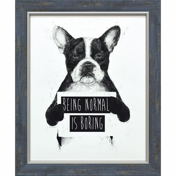 「ノーマルイズボアリング」バラズス ショルティ アートポスター[絵画通販]いぬ 犬 イヌ ドッグ 動物 絵 絵画【絵のある暮らし】【壁掛けフック付き】