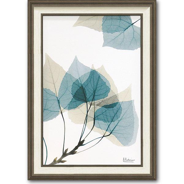 「リーフ1」X-RAY キャンバスアート [絵画通販]花 レントゲンアート アート【絵のある暮らし】【壁掛けフックつき】