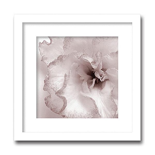 「Jk driggs/Blossom(two)」(フォトグラフ インテリアアートフレーム)[絵画通販]【絵のある暮らし】【壁掛けフックつき】