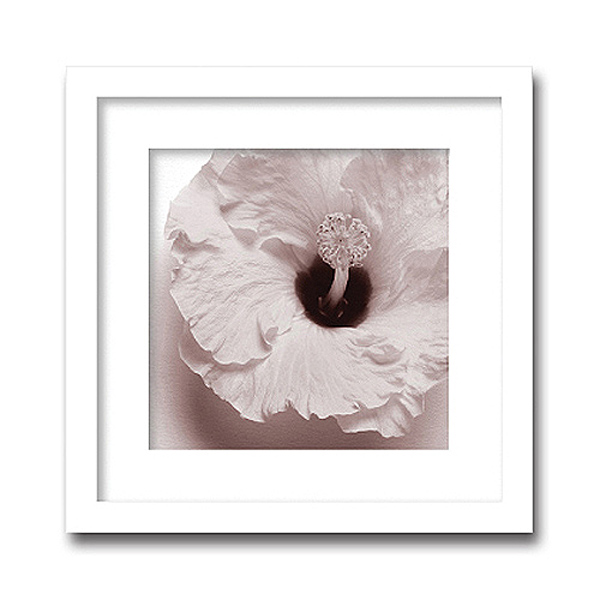 「Jk driggs/Blossom(four)」(フォトグラフ インテリアアートフレーム)[絵画通販]【絵のある暮らし】【壁掛けフックつき】