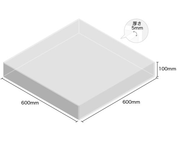 【オーダー品・キャンセル返品不可】透明アクリルケース 5面 100×600×600 厚5mm 【光】