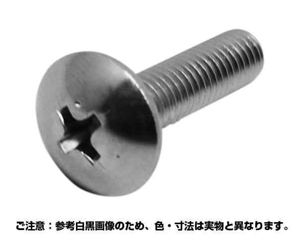 (プラス)トラス小ネジ ステンレス 6x35 入数250【コノエ】