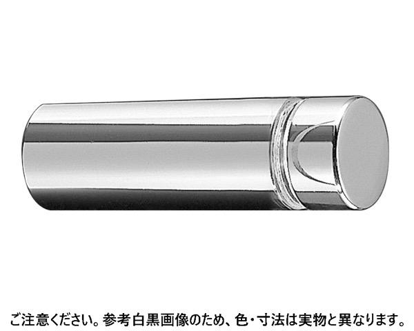 PA 真鍮 クローム 20-100 (4個)【シロクマ】