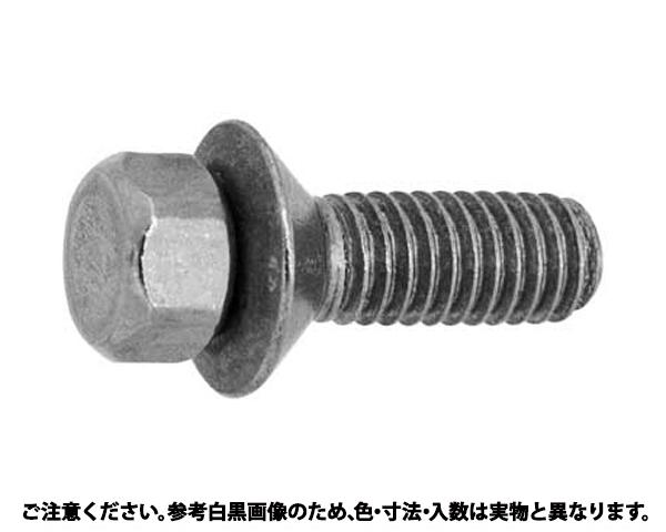 ステン シメキリマルサラビス 材質(ステンレス) 規格(6X16) 入数(700)
