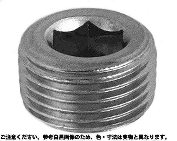 サカムラ プラグ(シズミ 表面処理(三価ホワイト(白)) 規格(R1