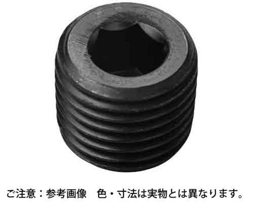 サカムラプラグSP2シズミ 規格(R1