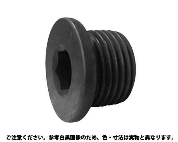 NSフランジプラグ 規格(G1/8) 入数(400)