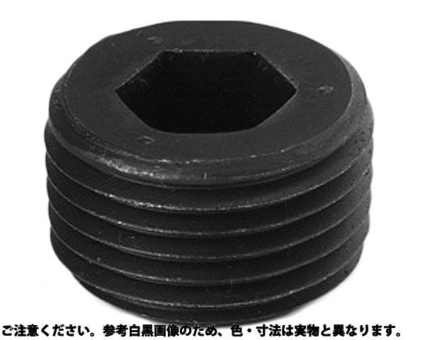 GOSHOプラグNPTFシス 表面処理(ニッケル鍍金(装飾) ) 規格(GDL1/4) 入数(500)