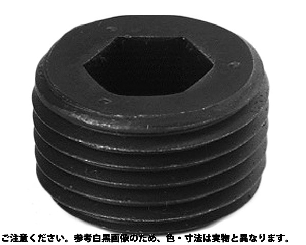 GOSHOプラグNPTFシス 表面処理(ニッケル鍍金(装飾) ) 規格(GDL3/8) 入数(500)