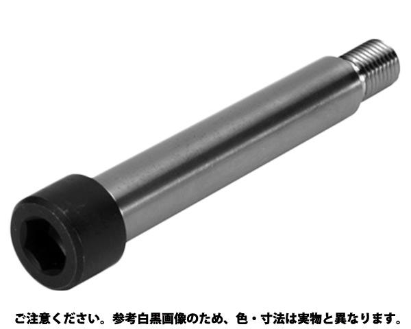 ショルダーBT(TSB 規格(4.5X20) 入数(100)