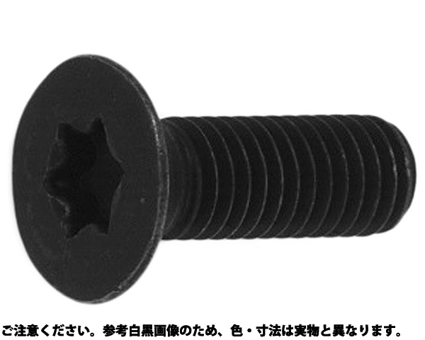 TORX-サラCAP(シンJIS 規格(3X6) 入数(1000)
