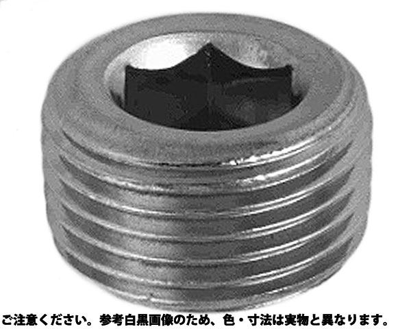 SUSサカムラプラグ(ウキ 材質(ステンレス) 規格(R1/4-19) 入数(300)