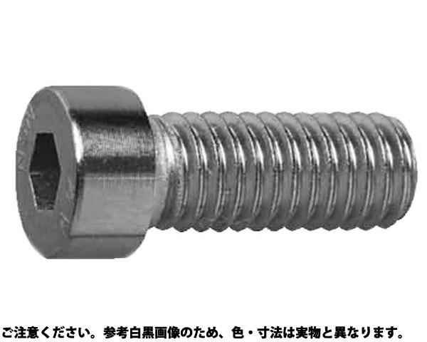 SUSコアタマローヘッドCAP 材質(ステンレス) 規格(3X8) 入数(1000)