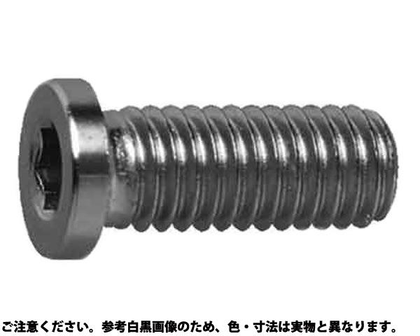 SUS コアタマNSローヘッド 材質(ステンレス) 規格(6X20) 入数(400)