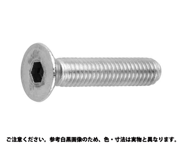 SUS-8.8 サラCAP 材質(SUS316L) 規格(16X50) 入数(25)