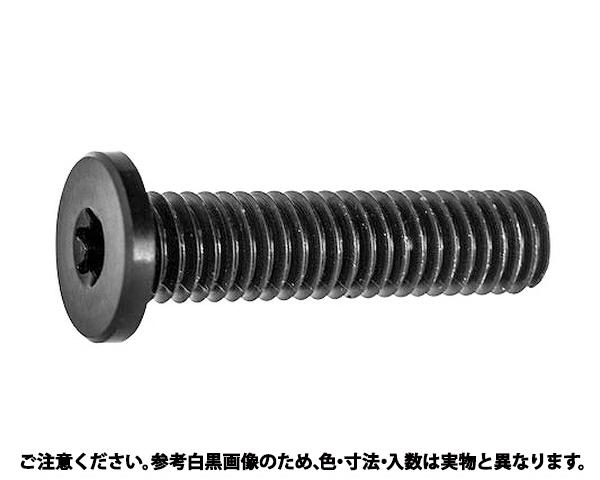 レニーTRX極低頭キャップ■材質(鉄)■規格(4X12)■入数1000