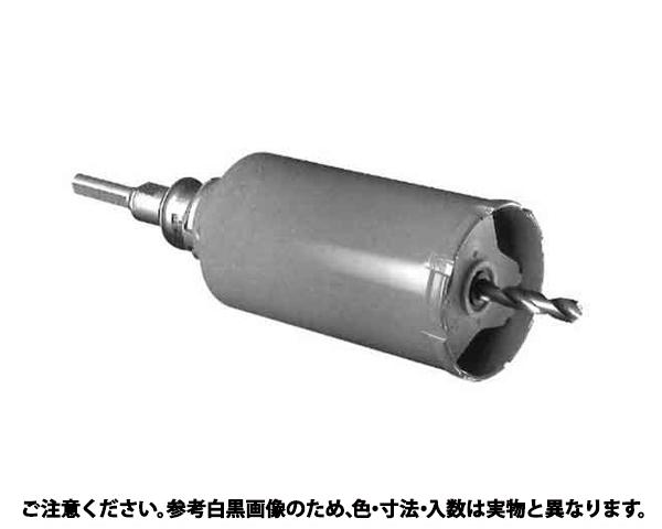 ガルバWCDS(SDS 規格(PCGW160R) 入数(1)
