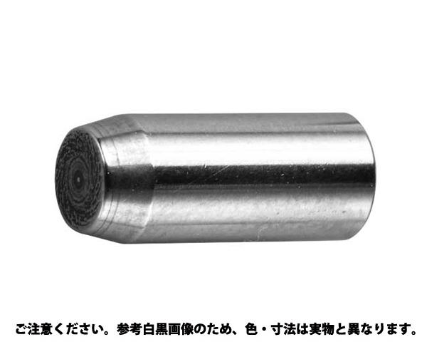 ダウエルピン(MSDP 規格(4X8) 入数(1000)
