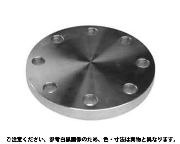 ブラインドフランジ(BF 材質(SUS316L) 規格(10K-125A) 入数(1)