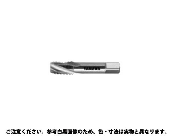 SP-S-PTタップ 規格(1-11) 入数(1)
