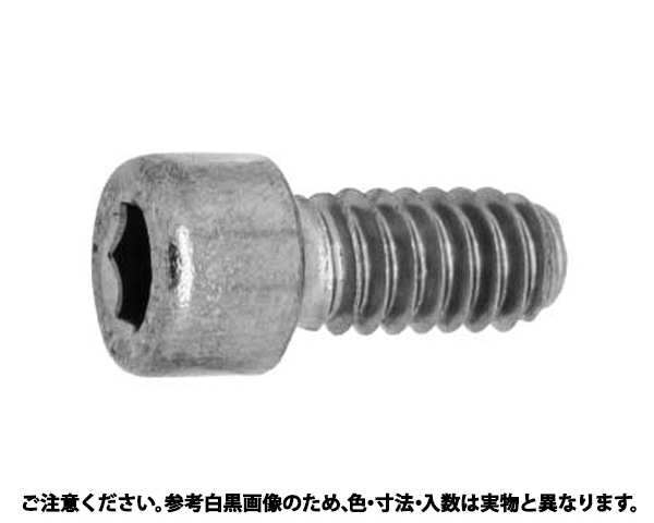 SUS-8.8 CAP(UNC 材質(SUS316L) 規格(1/4X1