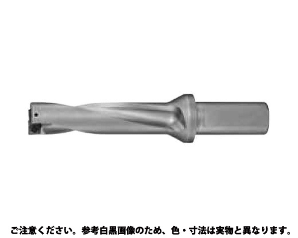アクアドリル4D  NWDX 規格(225D4S25) 入数(1)