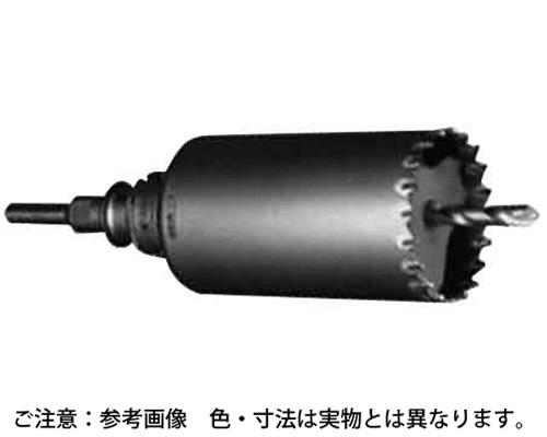 シンドウヨウCDS SDS 規格(PCSW220R) 入数(1)