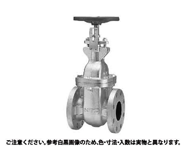 ゲートバルブ(10FCWI 規格( 65A(2