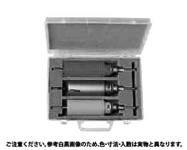 コア3キョウダイBOXキット 規格( PE1-80) 入数(1)
