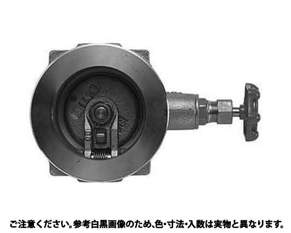 チャッキバルブ(10UW 規格(80A(3