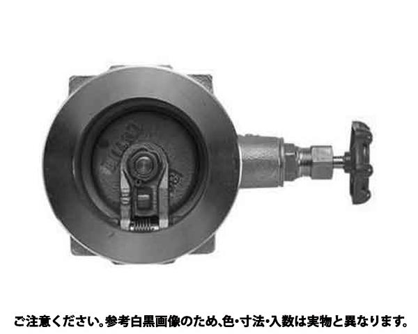 チャッキバルブ(10UWS 規格(80A(3