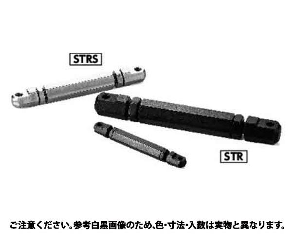 STR-100 規格((1イリ) 入数(1)