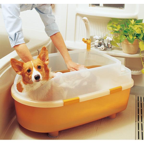 ペット用お風呂 ペットバス 犬 猫 中型犬 BO-800E ペット用バスタブ SALE開催中 アイリスオーヤマ 売れ筋ランキング オレンジ送料無料