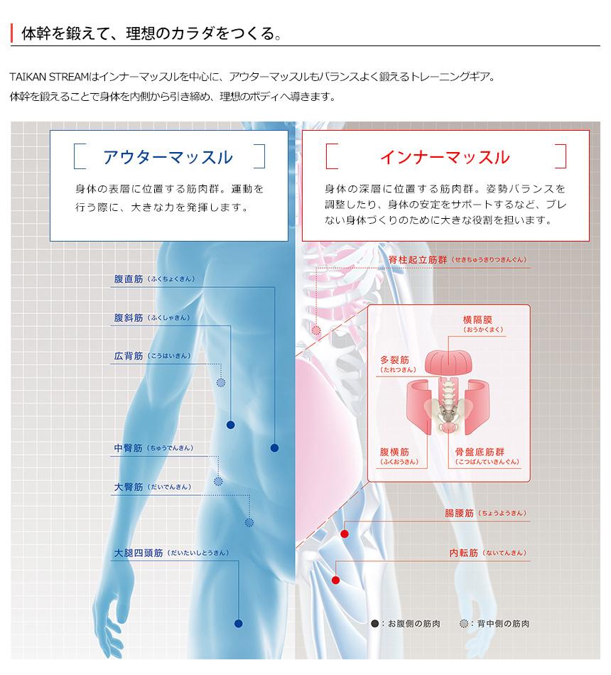 通販 ビートップス 体幹 ストリーム タイカン PROFESSIONAL STREAM ...