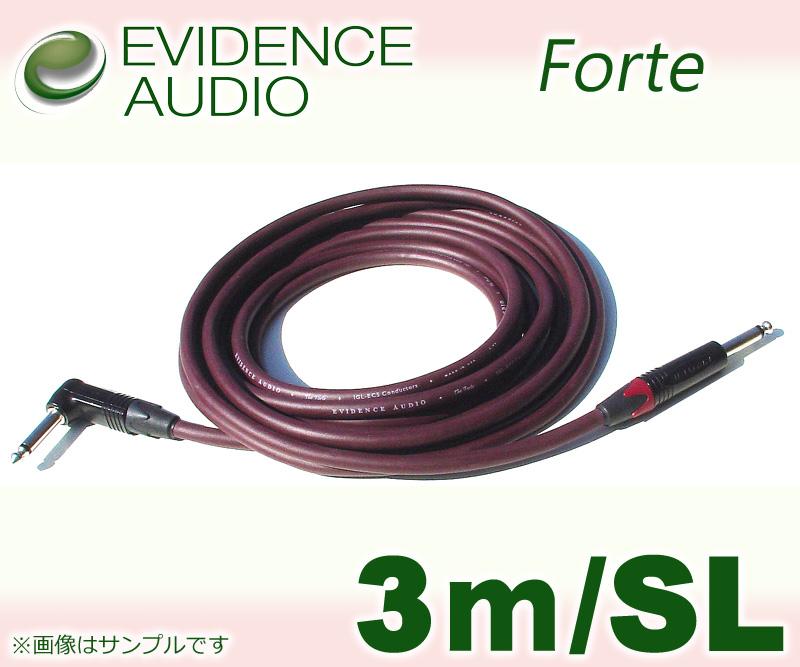 EVIDENCE AUDIO Forte FTRS10〔3m-SL〕(シールド)(送料無料)【ONLINE STORE】