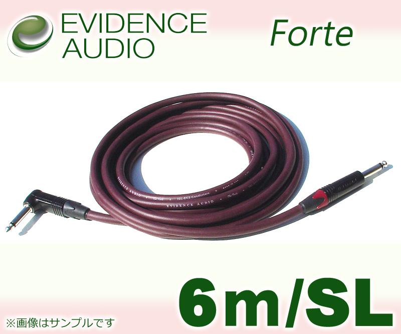 EVIDENCE AUDIO Forte FTRS20〔6m-SL〕(シールド)(送料無料)【ONLINE STORE】