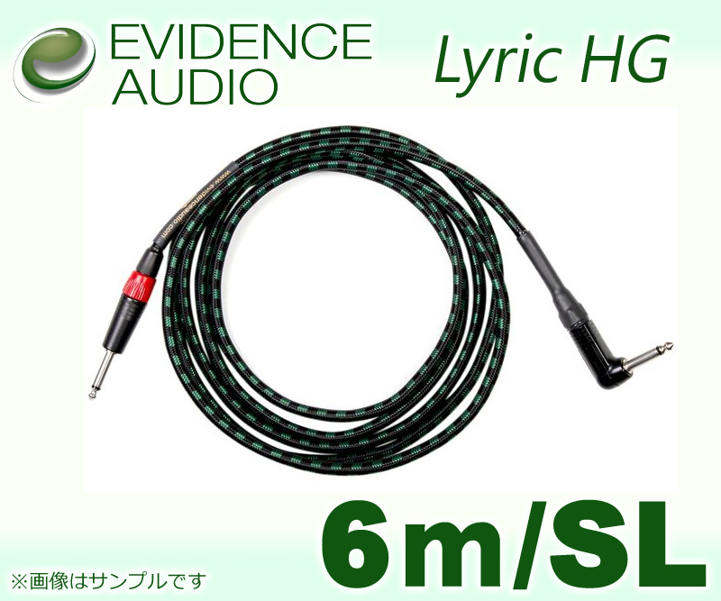 EVIDENCE AUDIO Lyric HG LYHGRS20〔6m-SL〕《シールド》【送料無料】【smtb-u】【ONLINE STORE】